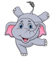 Cute elephant cartoon circus vector image vector image