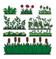 greenery green grass flower plants and decorative vector image vector image