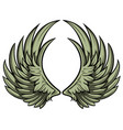 hand drawn pair wings vector image