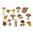 Mushrooms isolated icons set vector image vector image
