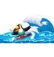 toucan surfing big wave vector image vector image