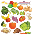 Variety of different kinds of Nutritious Foods vector image