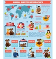 Animal shelter infographics vector image