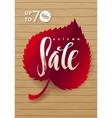 Autumn Sale Hand lettering Burgundy Leaf vector image