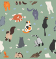 cats poses behind butts flat design seamless