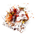 color fox head vector image vector image