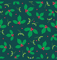 dark green red holly berry and mistletoe vector image