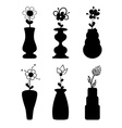 Different slyle of vases with flowers vector image