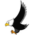 flying american eagle vector image