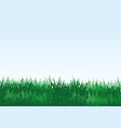 green grass on a blue background vector image vector image
