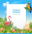 summer paradise background composition vector image vector image