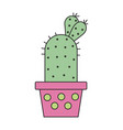 a cactus in a pot in flat style vector image vector image