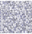 abstract gray triangles background vector image vector image