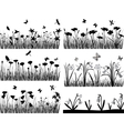 collection of plants vector image vector image