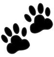 dog paws following on a white background vector image vector image