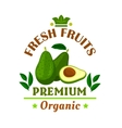 Fresh fruits poster Green avocado icon vector image