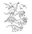 realistic graphic dinosaurs vector image vector image