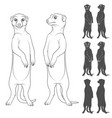 set of depicting the meerkats vector image vector image