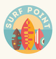 surf point vector image vector image