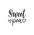 sweet pea nice love lettering design vector image