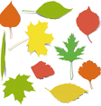 Autumn elements for design vector image vector image