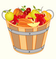 bucket with fruit and berry vector image vector image