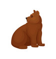 flat of sitting bear side vector image vector image