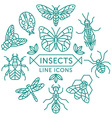 insects line icons vector image