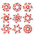 isolated abstract red color round shape floral vector image