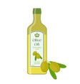 olive oilbottle of natural oilbranch with olives vector image vector image