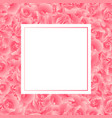 pink carnation flower banner card vector image