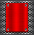 red metal brushed plate with screws on perforated vector image vector image