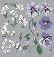 set for creating floral frame with viola flowers vector image