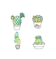 Succulent cactus hand drawn vector image vector image