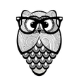 Textured owl with glasses vector image