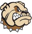 bull dog head logo mascot vector image vector image