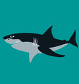 shark flat style profile vector image