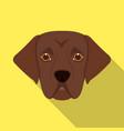 the dog breed is a labradormuzzle labrador vector image vector image