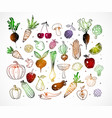 colored doodle fruits and vegetables isolated on vector image vector image