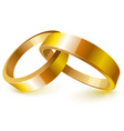 gold wedding rings vector image vector image