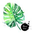 hand drawn sketch watercolor tropical leaf vector image vector image