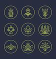 set thin line floral design elements for logos vector image