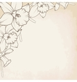 Narcissus daffodil flowers corner border element vector image