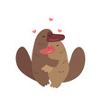 couple of platypuses in love embracing each other vector image vector image