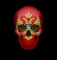 montenegro flag skull vector image vector image