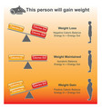 person will gain weight charts vector image vector image