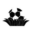 soccer or football sport vector image