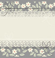 elegant lace frame with white flowers vector image vector image