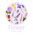 floral flower card design vector image