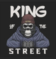 skull gorilla king street vector image